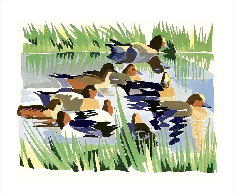 Greetings Card - Wigeon : Lisa Hooper
