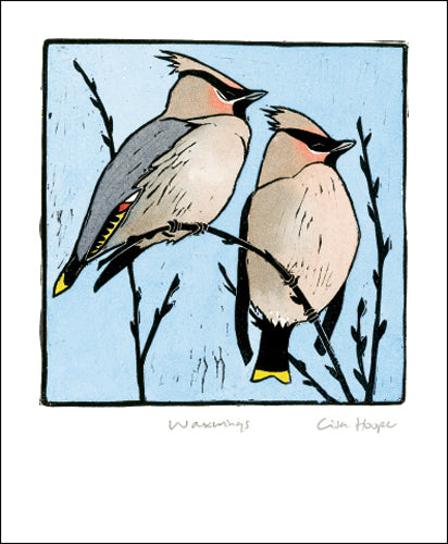 Greetings Card - Waxwings : Lisa Hooper