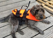 TWF - Pet Buoyancy Aid