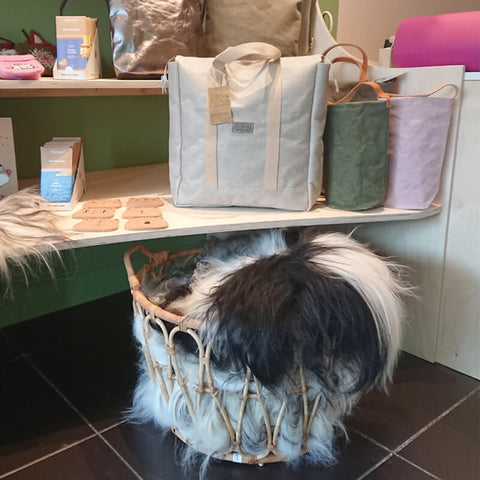 Bags and sheepskins