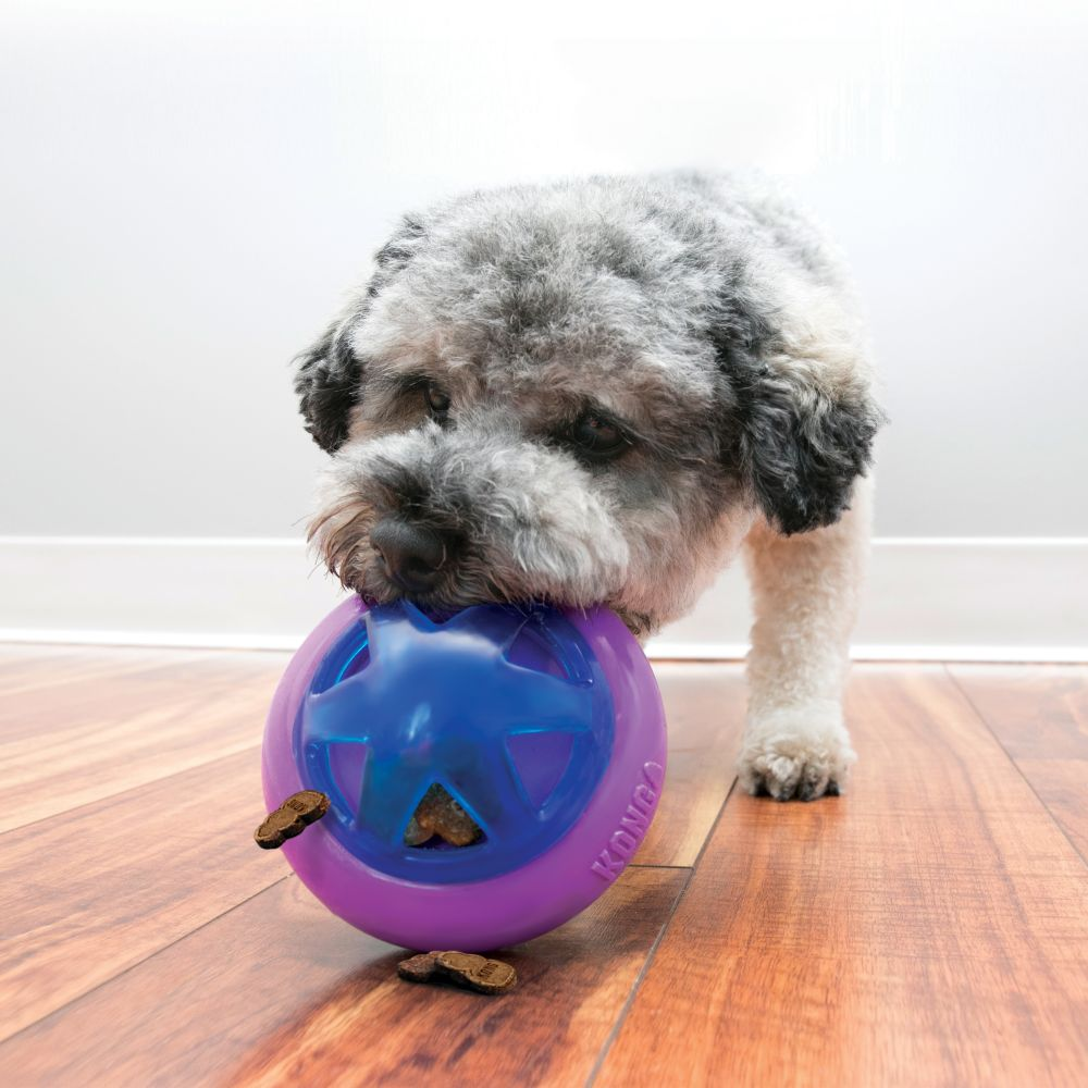 Kong Hopz Ball - Dog Toy