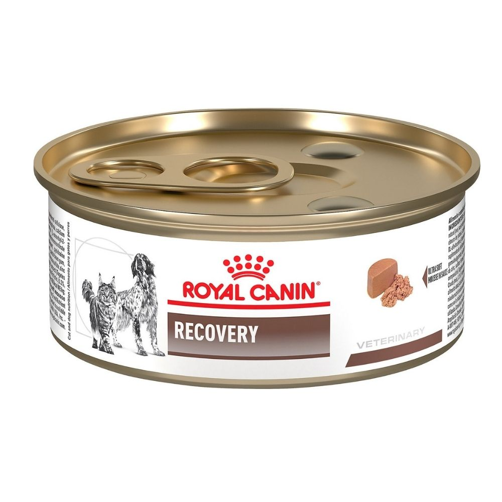 Royal Canin Recovery Can Wet Pet Food
