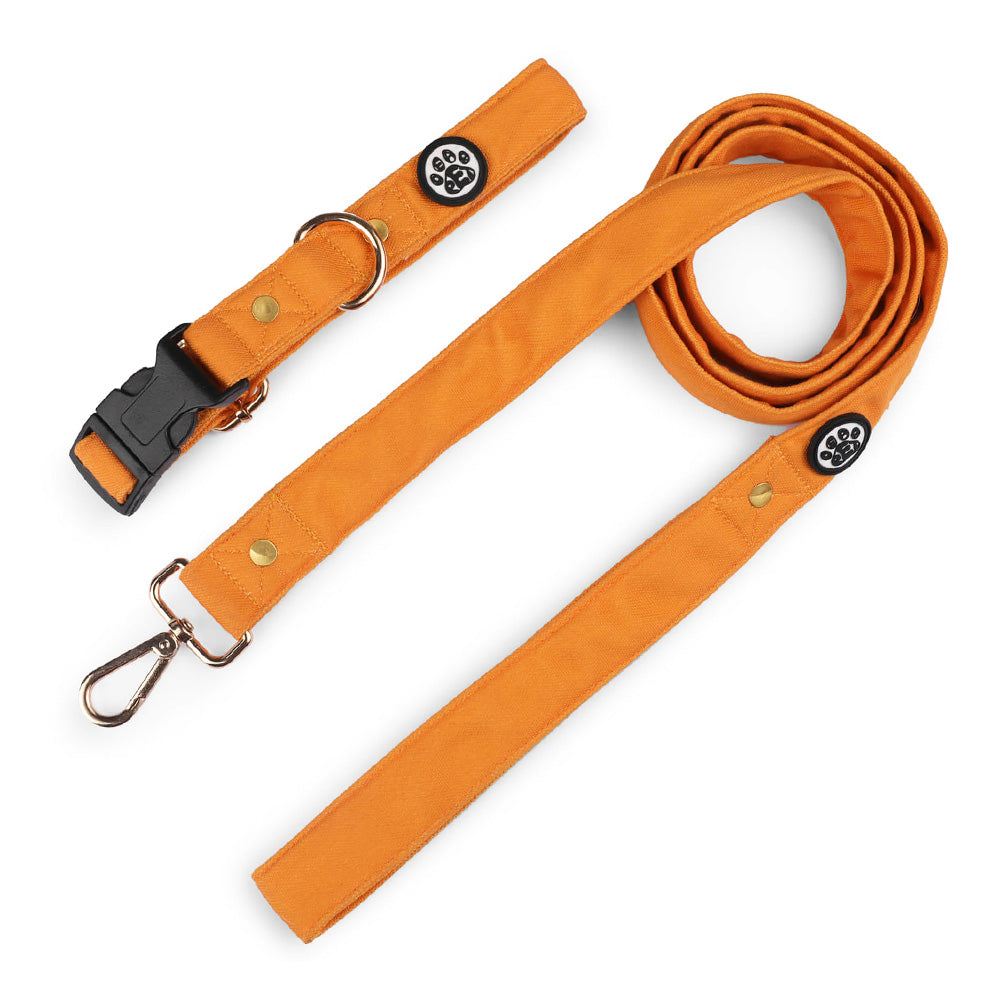 Dear Pet Classic Mustard Dog Collar & Leash Set