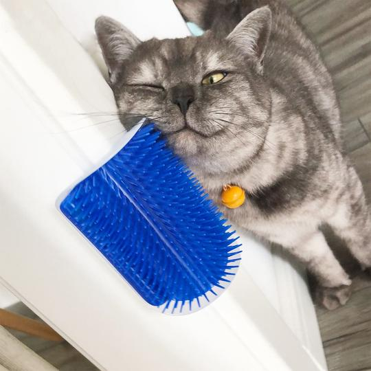 Cat Self Groomer Wall Brush
