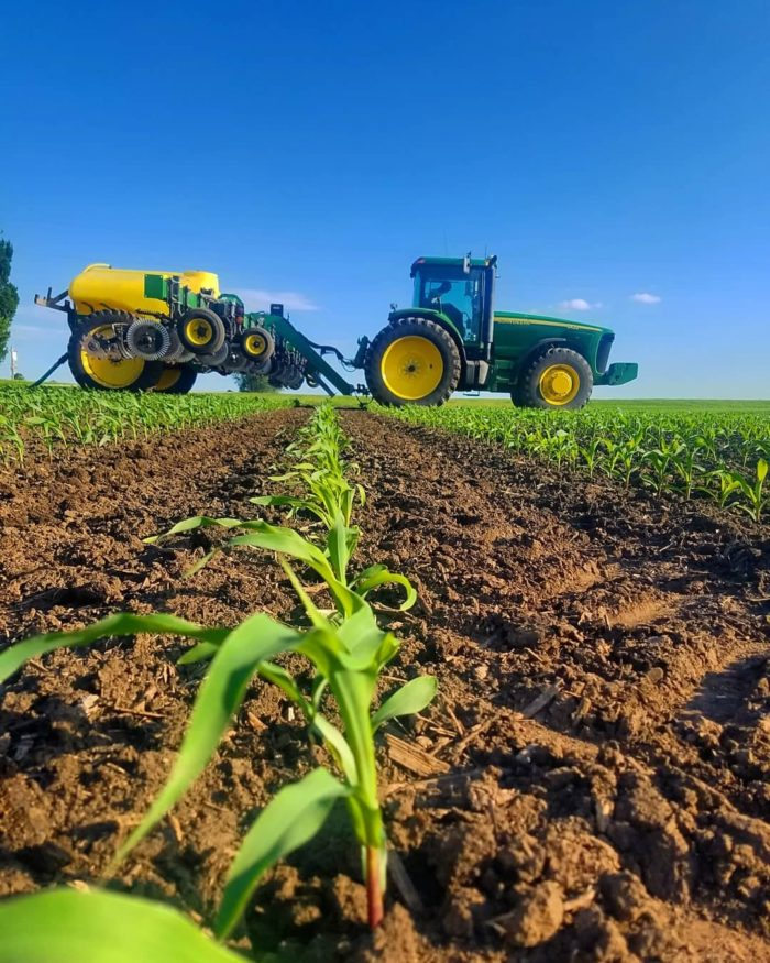 green tractor pulling equipment through growing corn field under bright blue sky farmer listening to farming podcasts