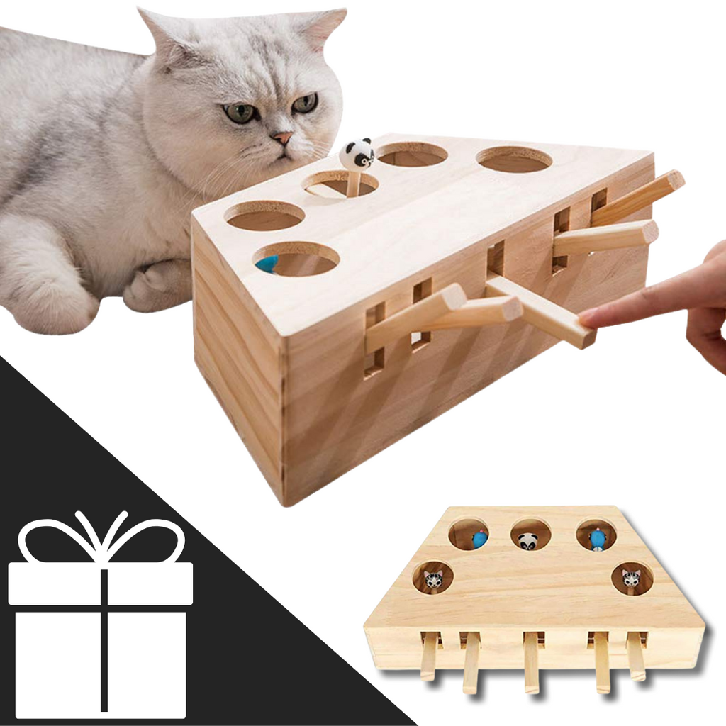 5 Hole Wooden Interactive Cat Toy - Ideal for cats - Ozayti