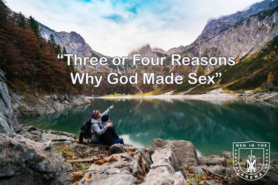 What is the Purpose of Sex? - Three (or Four) Reasons God Made Sex