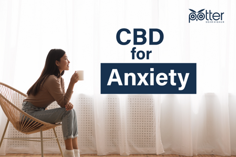 CBD for Anxiety image
