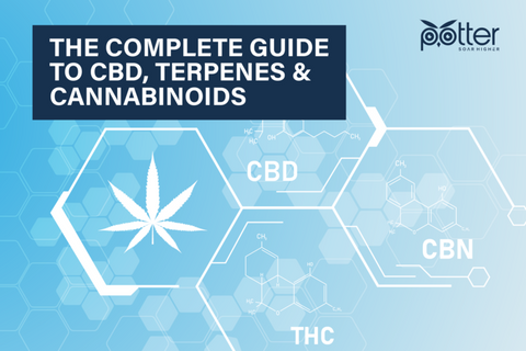 Complete Guide to CBD, Terpenes, Cannabinoids Cover Image