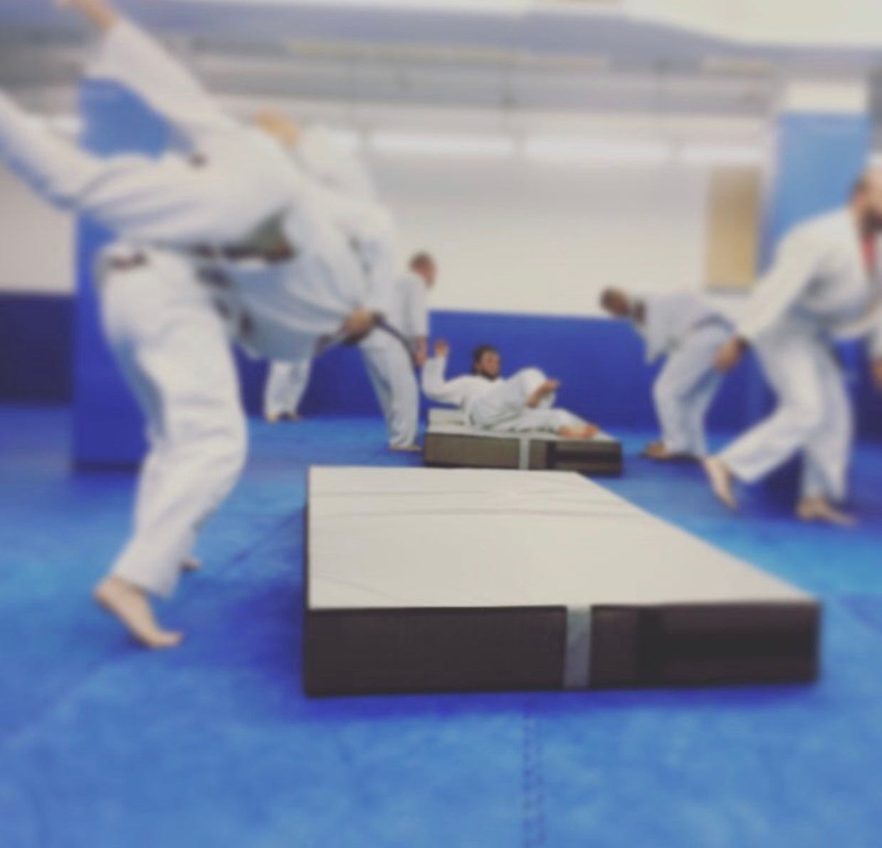 bjj throw mat landing mat