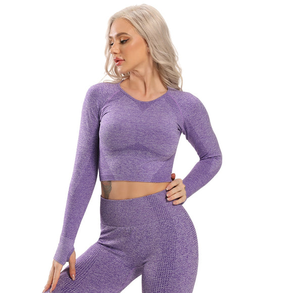 Seamless Yoga Top Long Sleeve Workout Tops for Women Crop Tops Women 2020 Sportswear Short Active Sexy Gym Clothing