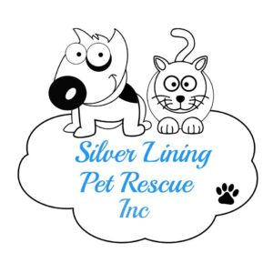 silver-lining-pet-rescue