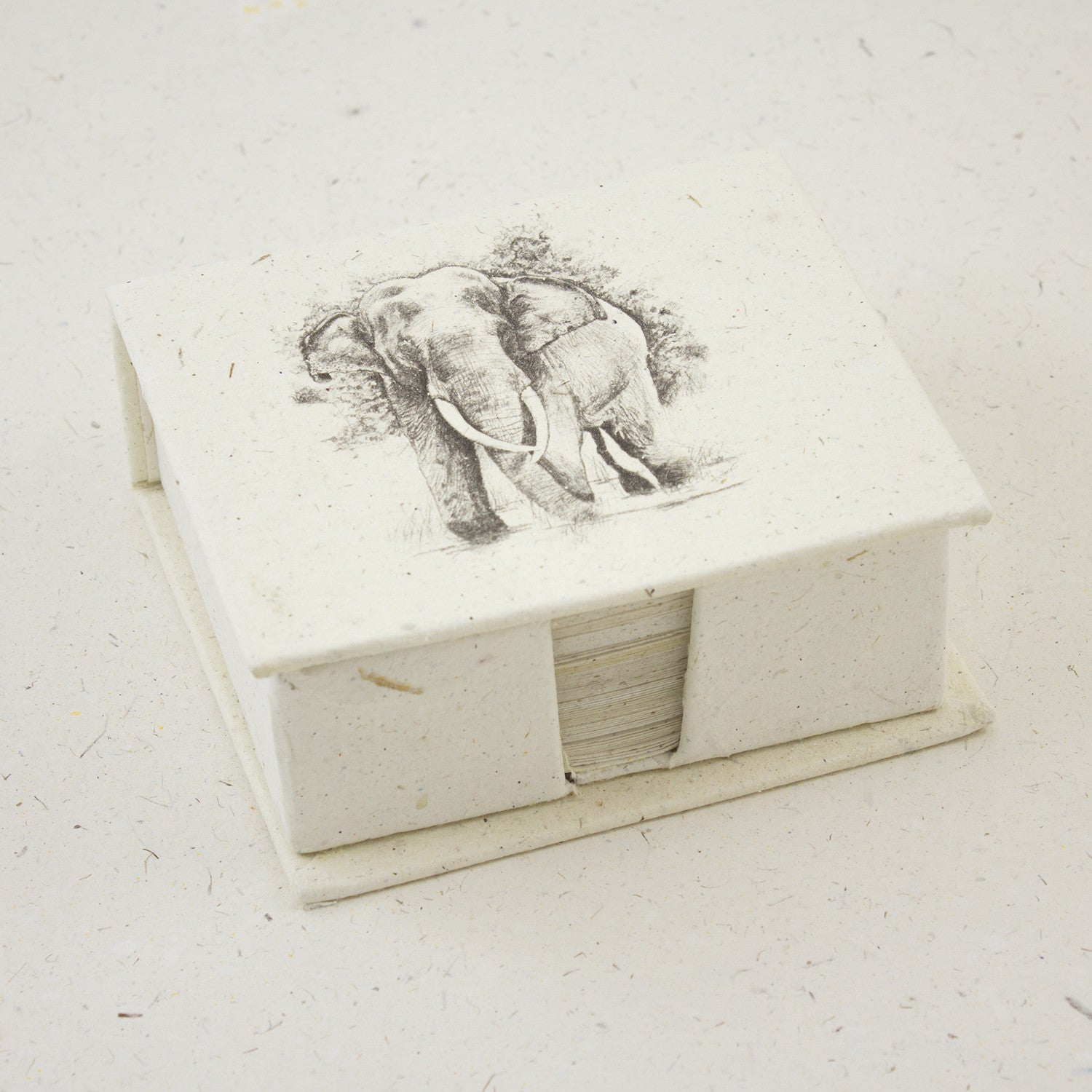 Note Box Tusker Sketch Natural White
