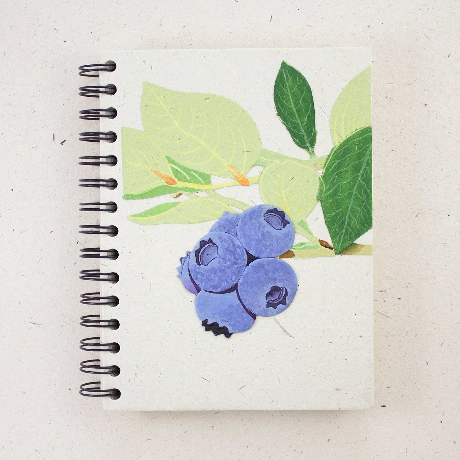 Large Notebook Blueberries Natural White