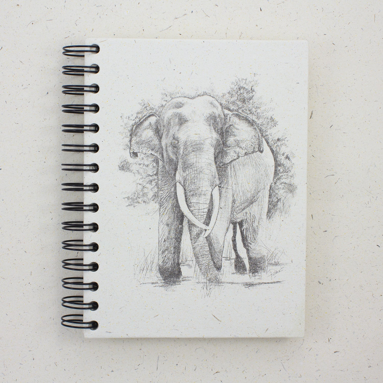 Large Notebook Tusker Sketch Natural White