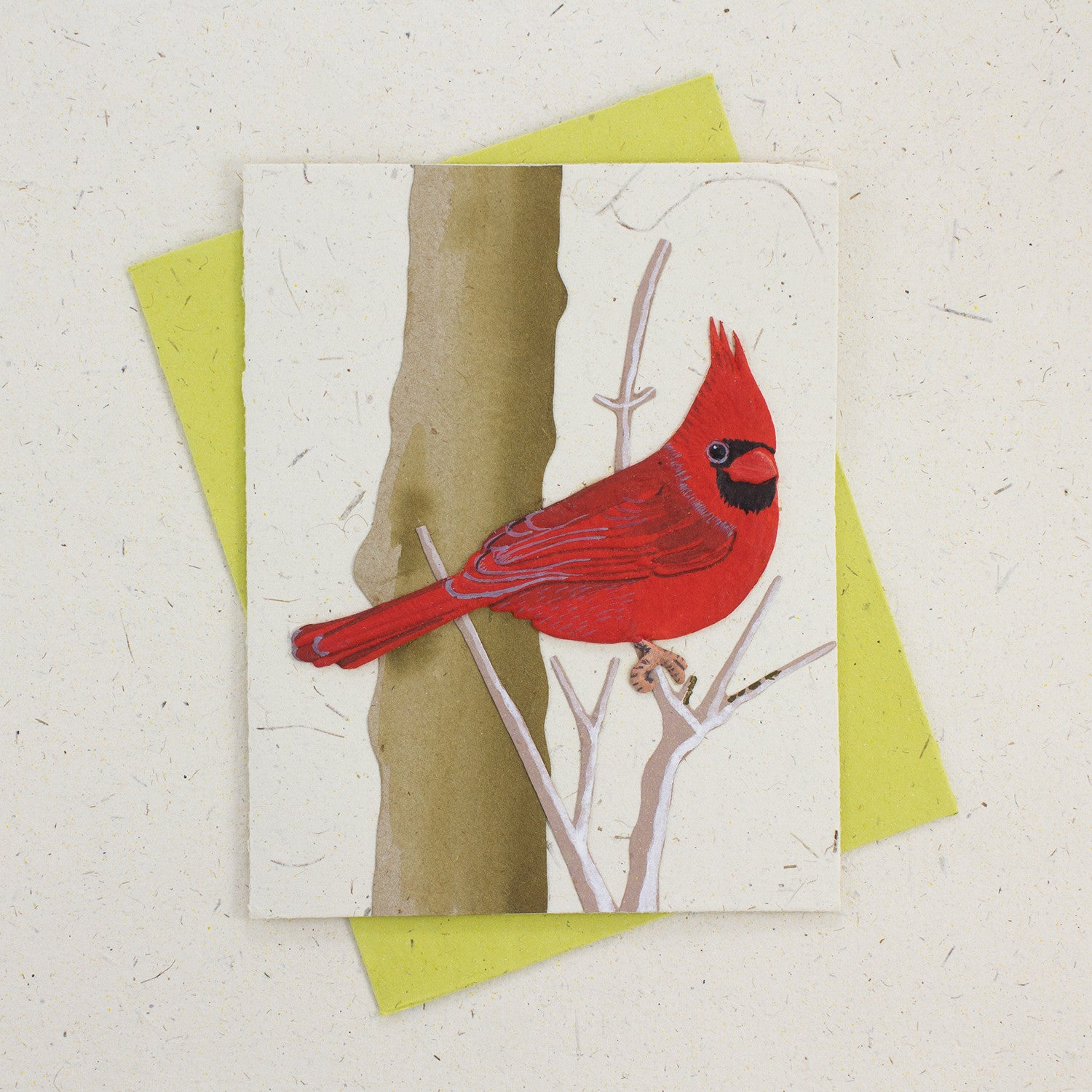 Single Greeting Card Cardinal Natural White