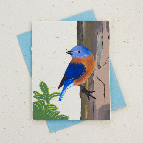 Single Greeting Card Bluebird Natural White
