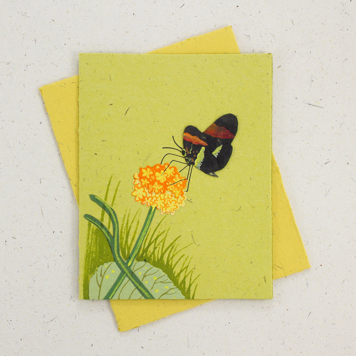Single Greeting Card Butterfly Light Green