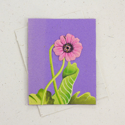 Single Greeting Card Pink Daisy Flower Purple