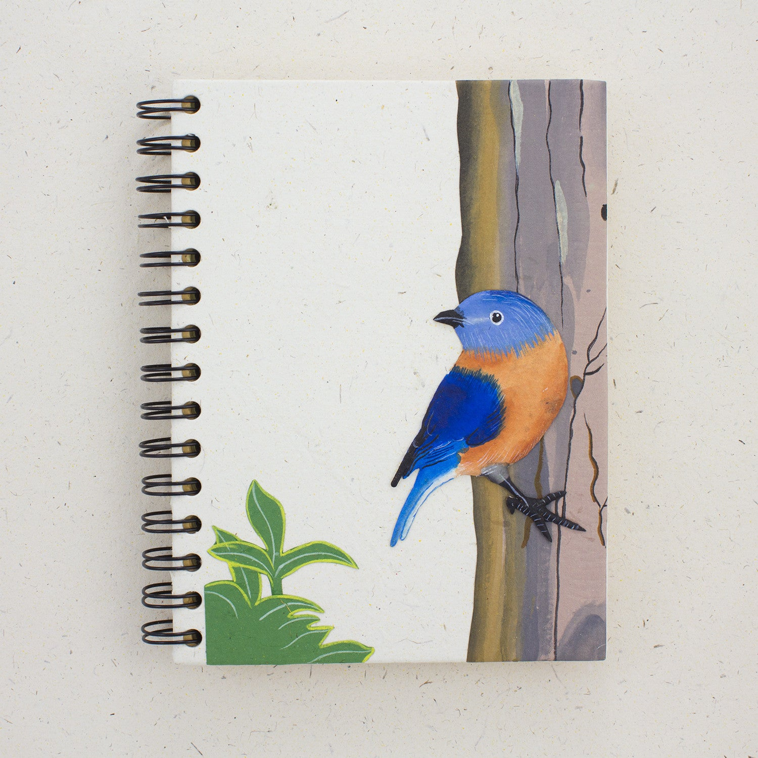 Large Notebook Bluebird Natural White