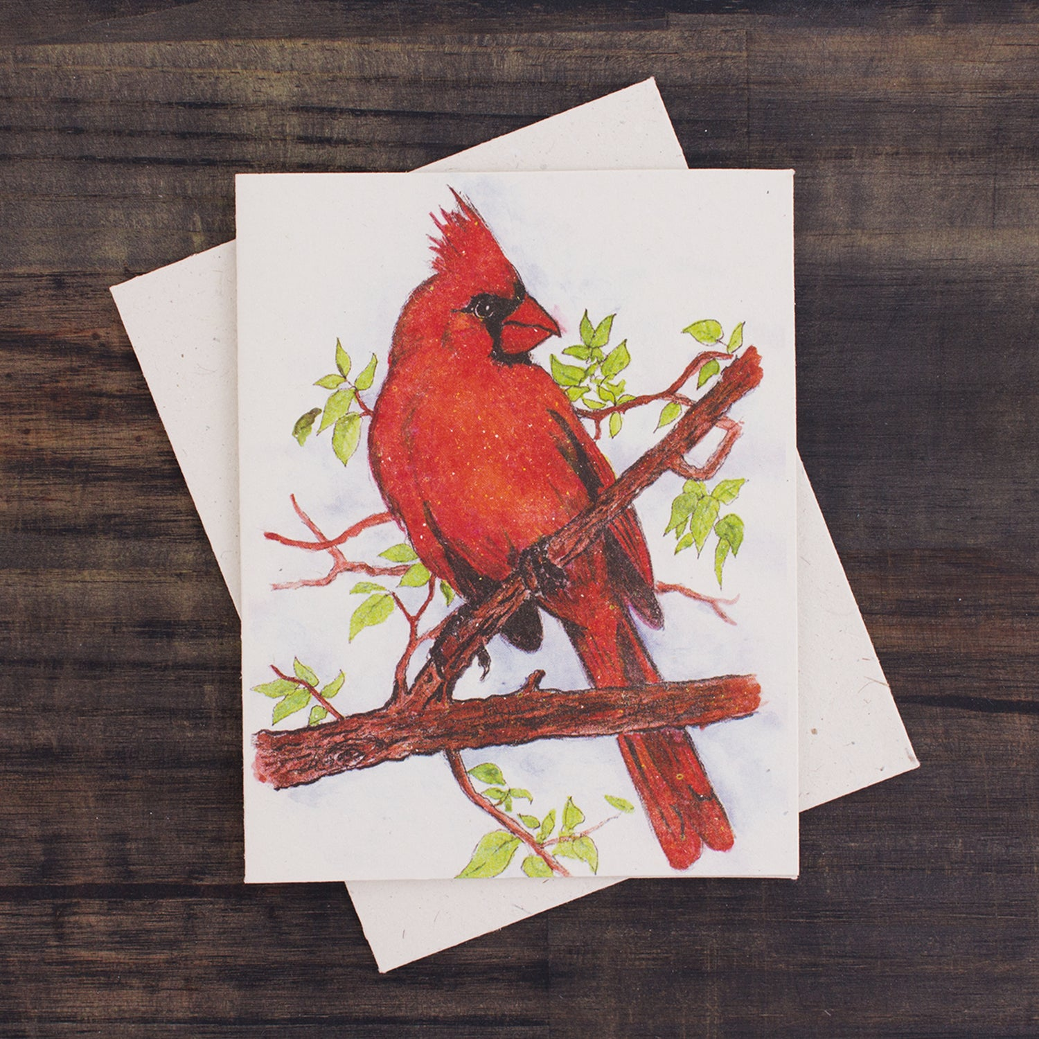 Single Greeting Card Cardinal Watercolor