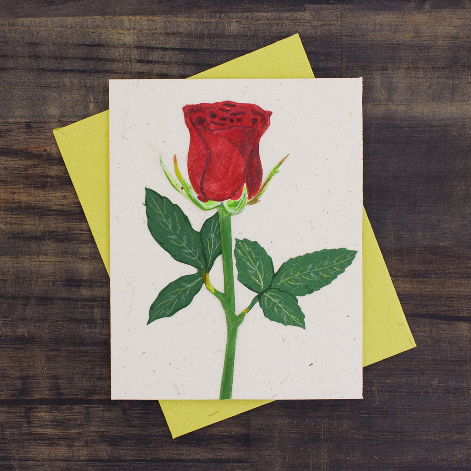 Single Greeting Card Rose Flower Natural White