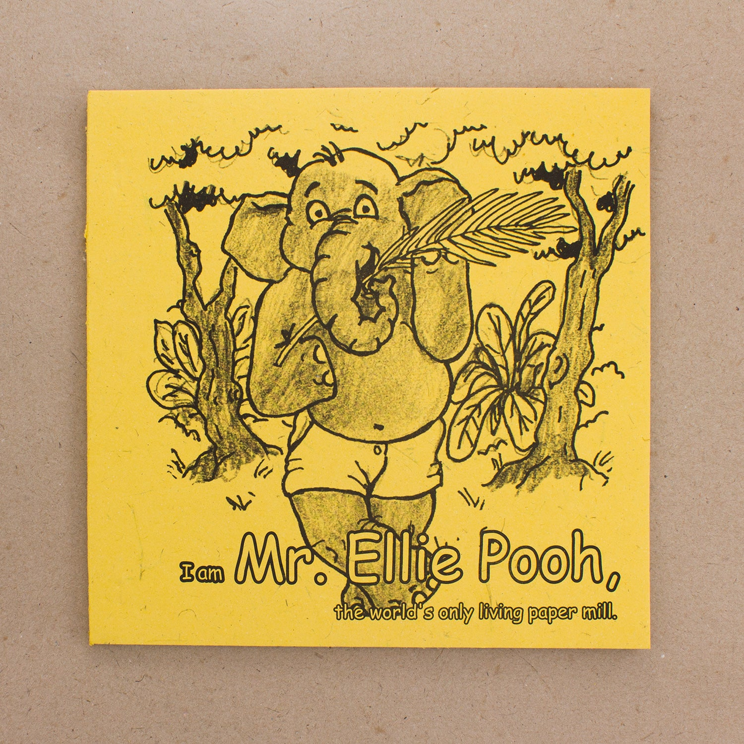 Mr. Ellie Pooh Story Coloring Book