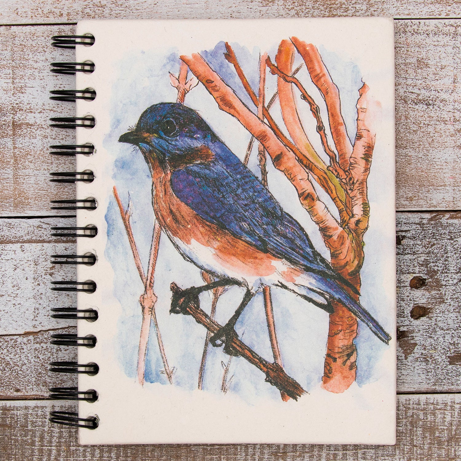 Large Notebook Bluebird Watercolor Sketch