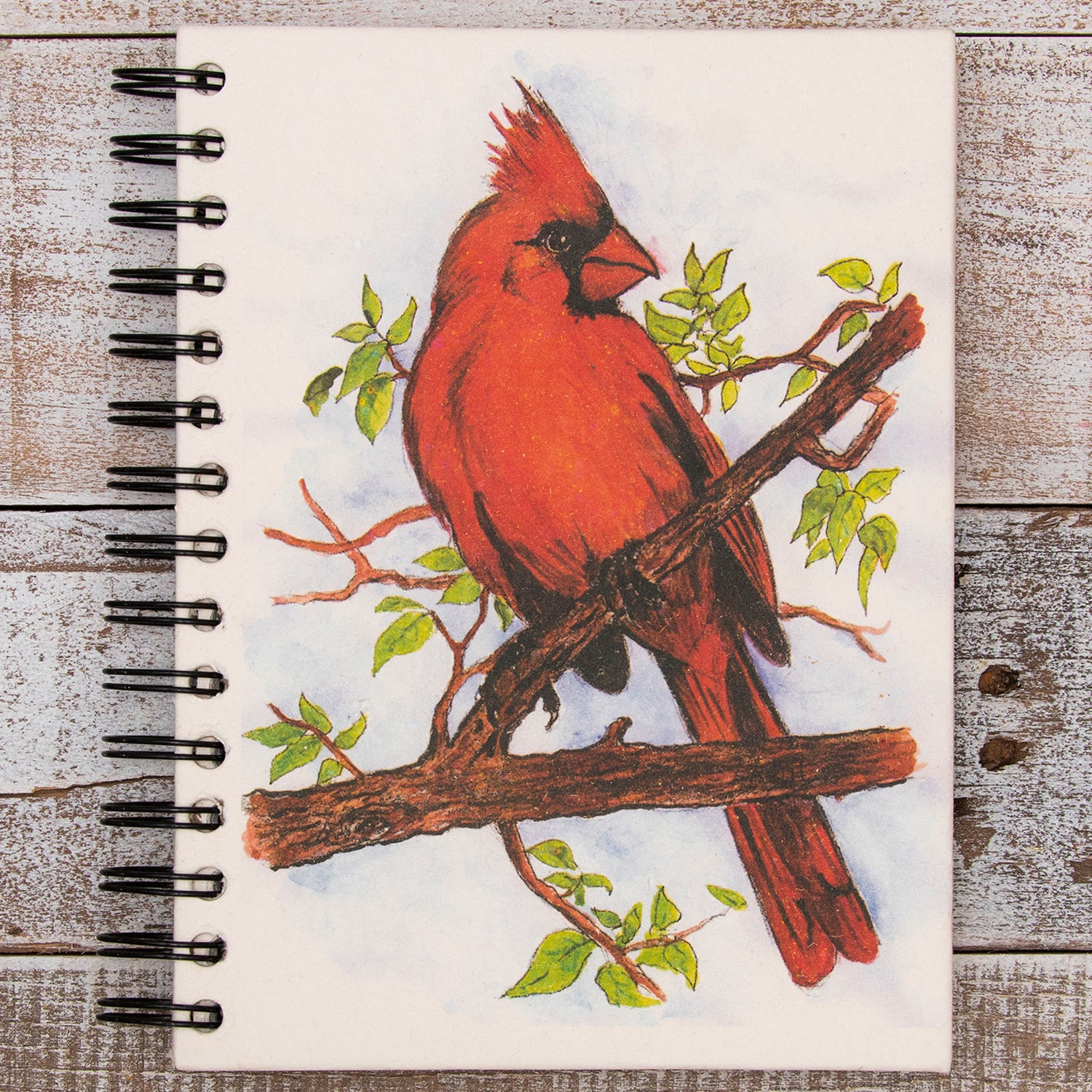 Large Notebook Cardinal Watercolor Sketch