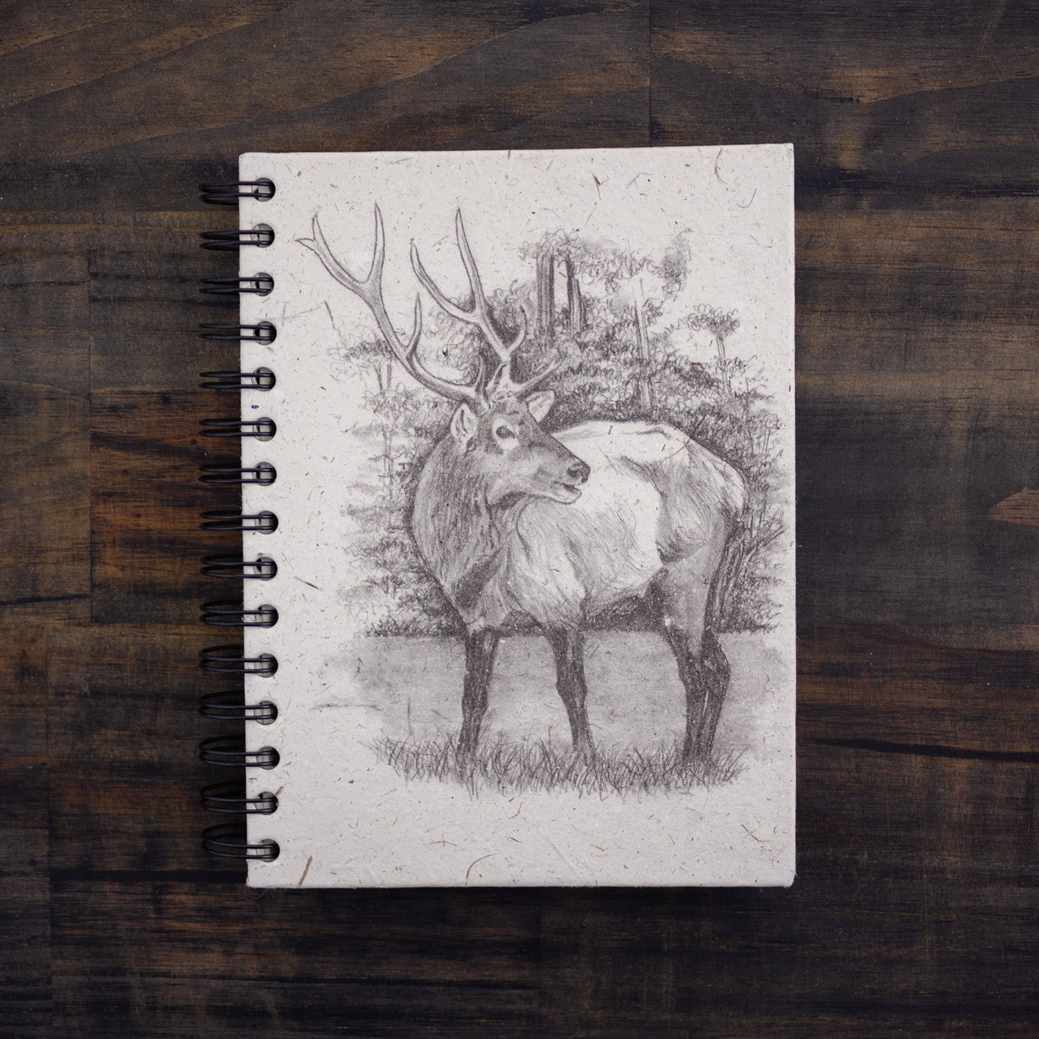 Large Notebook Elk Sketch