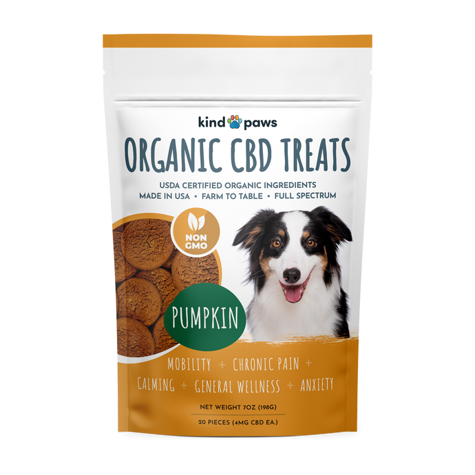 Organic CBD Dog Treats - Pumpkin - kindpaws
