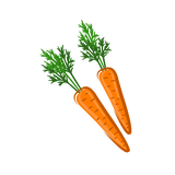 image of carrots that are great for dog teeth