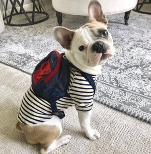 Load image into Gallery viewer, Canvas Mini Dog Backpack