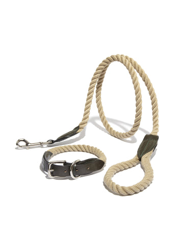 Leather & Rope Collar and Leash