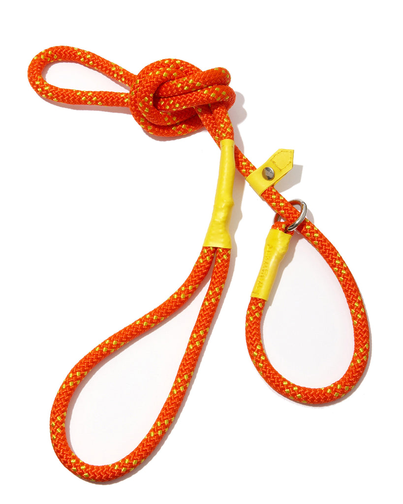 Climbing Rope Control Lead