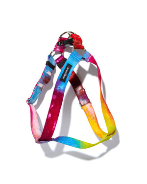 Catskills Indigo Tie-Dye  Leash & Collar