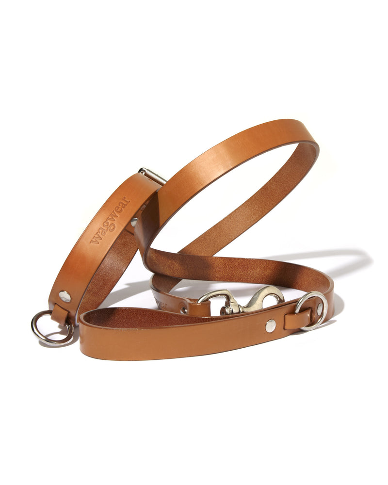 Western Collar and Leash