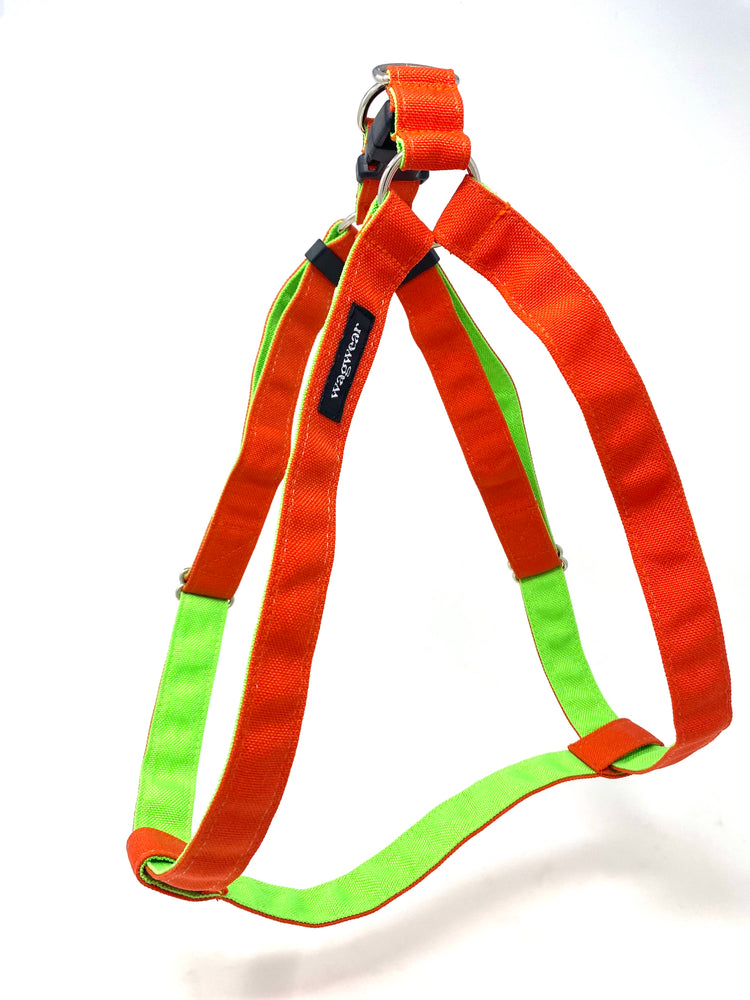 Cordura Step-In Harness