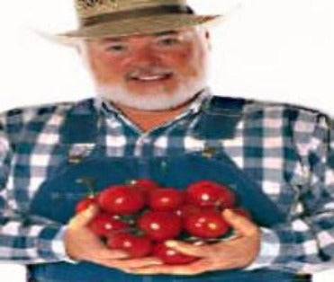 Albert's Favorite Sweet tender. Excellent producer of sweet tender tangy tomatoes all season Buy many and  make your garden a showcase.