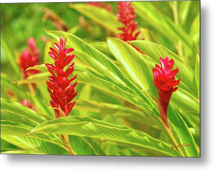 Open image in slideshow, Pink Nature - Metal Print