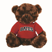 Elliott the Bear with BATES Sweater(2 Color options)