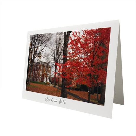 Quad in Fall Photo Greeting Card