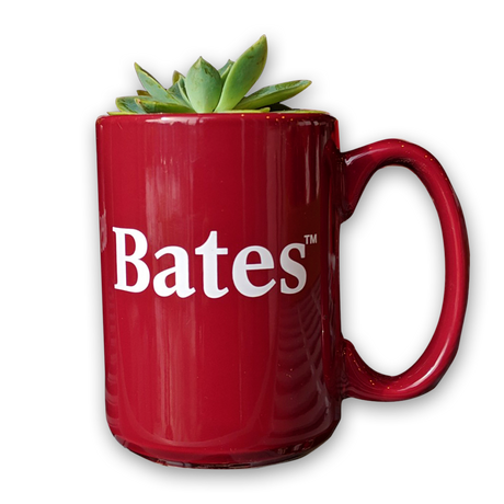 Bates Succulent Plant in Bates Mug (only available on campus)