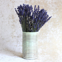 Load image into Gallery viewer, Lavender -  English (Hidcote)