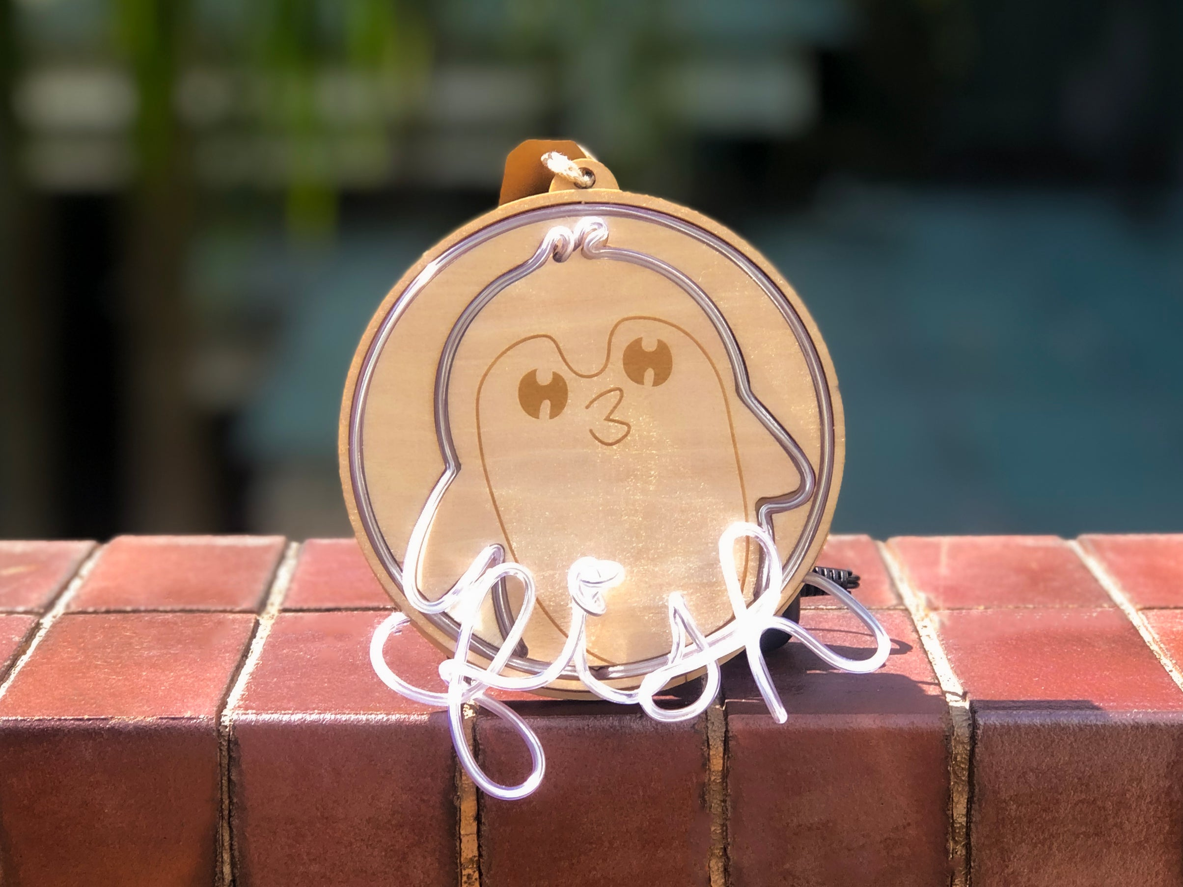 Pet Neon Sign Ornament Class