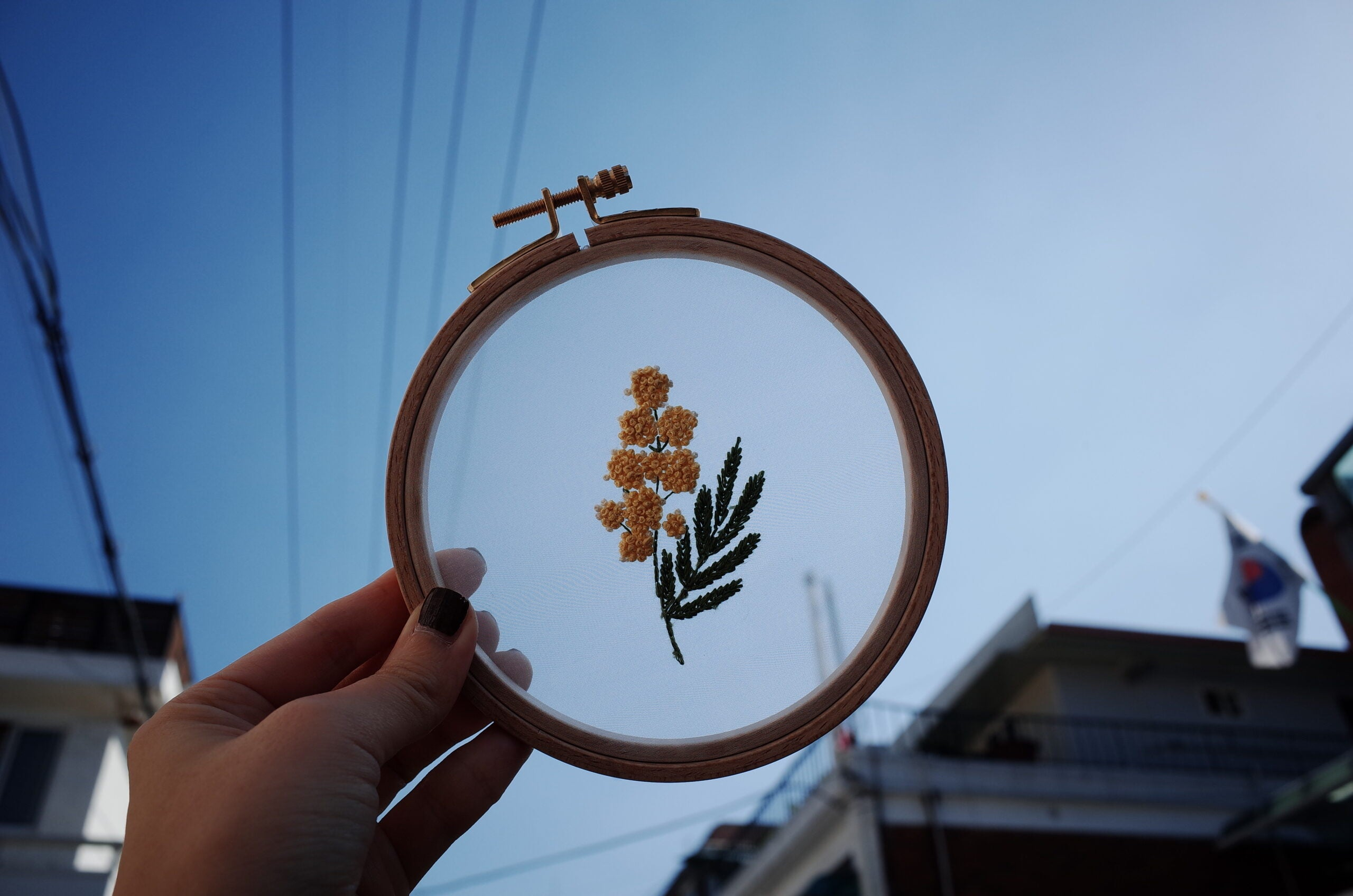 Transparent Mimosa Flower Embroidery Class