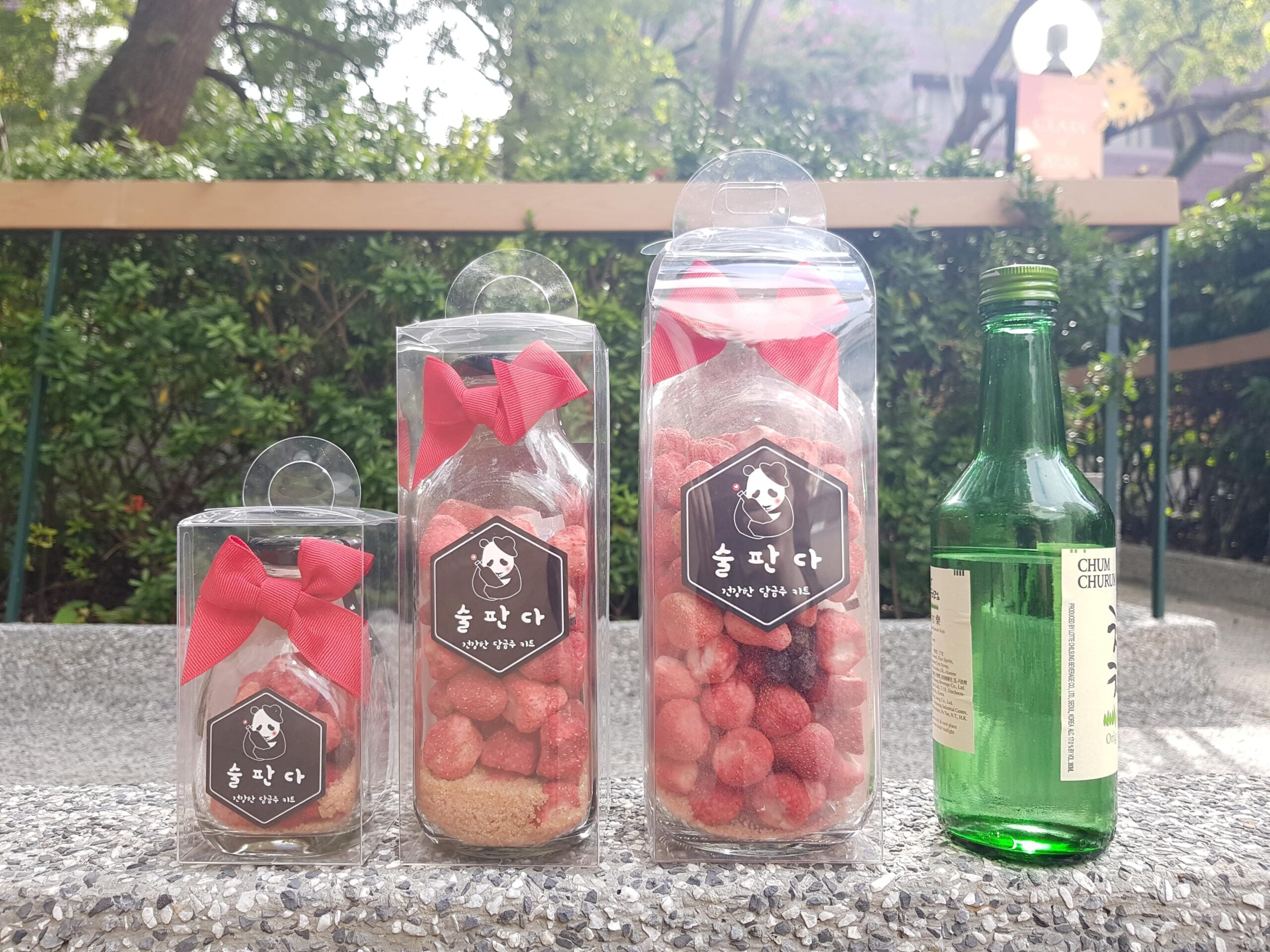 Natural Fruits & Herbs Infuser Starter <Berry Strawberry>