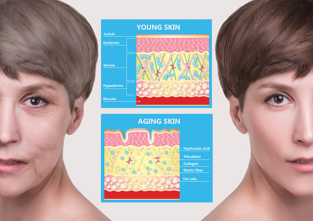 What can Red Light Therapy do to boost Collagen?