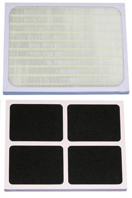 AC3000(i) Replacement filter (3000F)