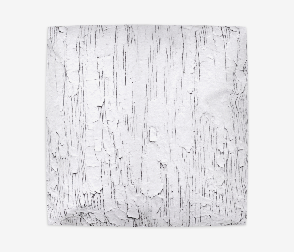 White Tree Bark Pillow